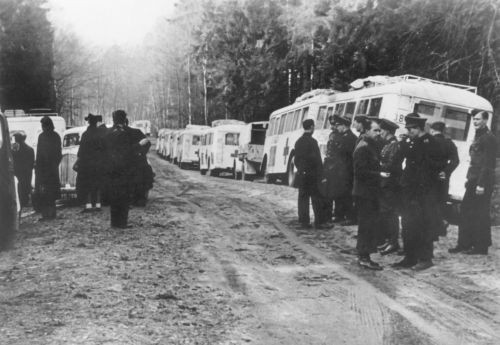 Bild 1 Vita bussarna